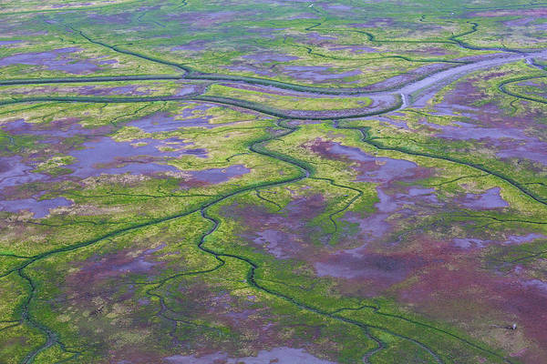 Photograph - Aerial Photos Over Lake Clark National by Gavriel Jecan