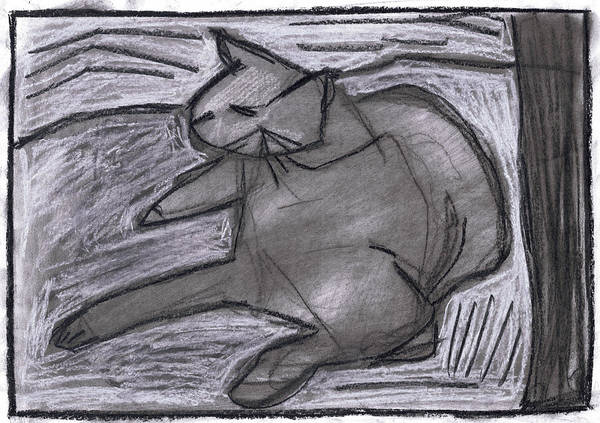 Drawing - Cat by Artist Dot