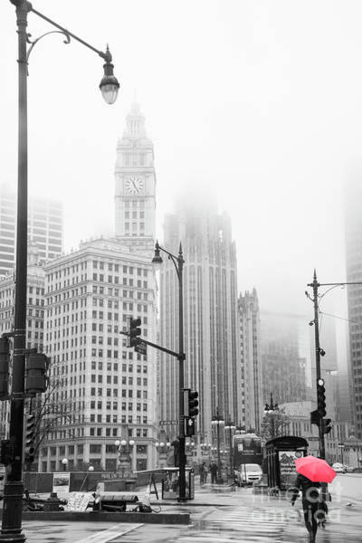 Wall Art - Photograph - Chicago by Juli Scalzi