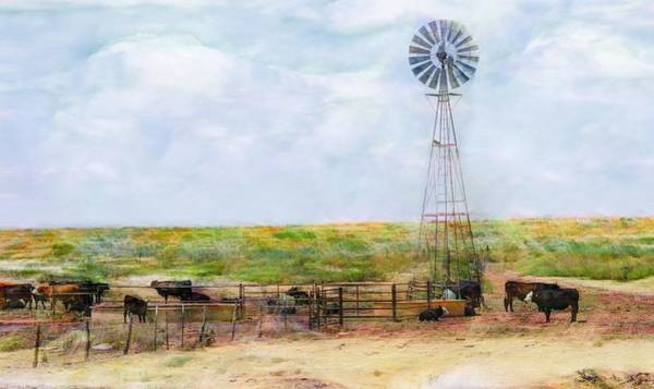 Digital Art - Classic Cattle  by Don Northup