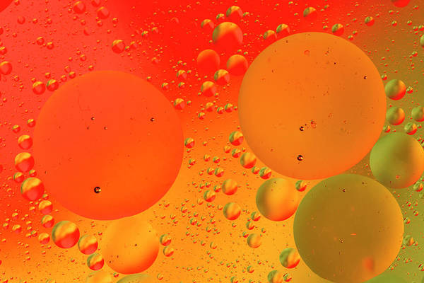 Wall Art - Photograph - Close-up Pattern Of Bubbles In Oil by Adam Jones