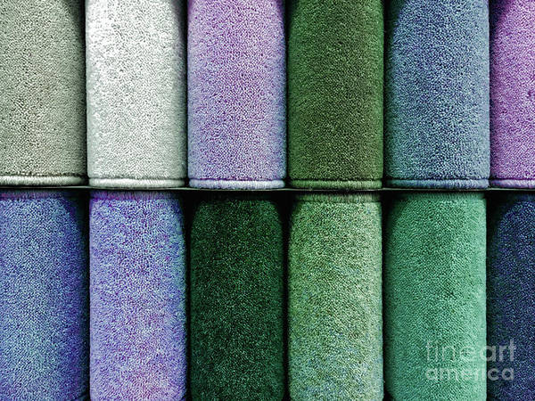 Wall Art - Photograph - Colourful Carpet Samples by Tom Gowanlock