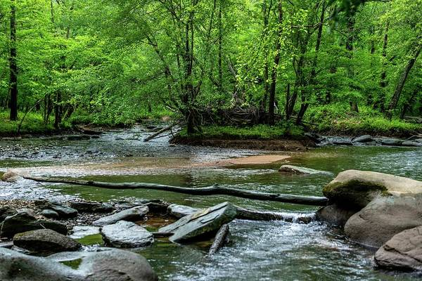 Summer Wall Art - Photograph - Fabulous Broad River by Ric Schafer