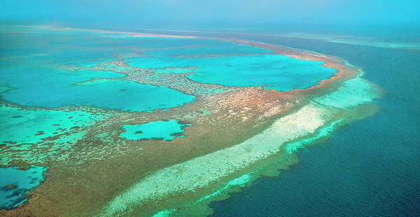 Reef Photograph - Great Barrier Reef, Australia by Australian Scenics