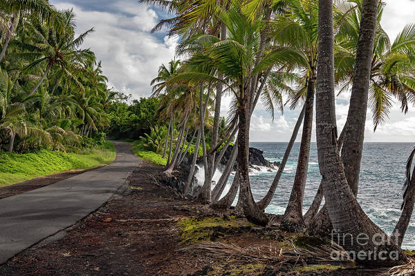 Photograph - Hawaii Big Island by Jim West