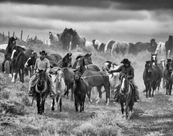 Wall Art - Photograph - Horse Roundup by Michael Lustbader