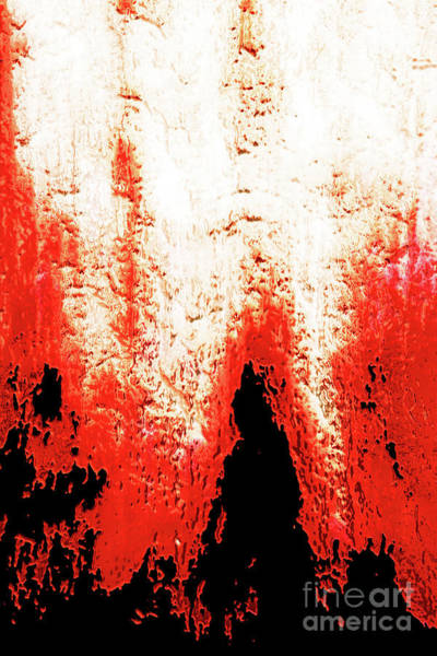 Wall Art - Photograph - Nature Abstract by Gaspar Avila