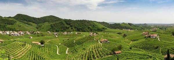 Wall Art - Photograph - Panorama Of Vineyard County Around Valdobbiadene by Pavel Rezac