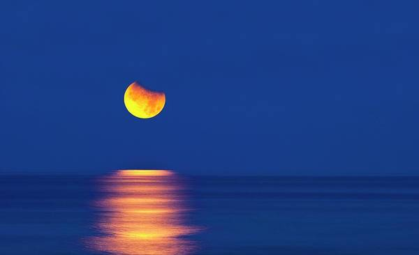 Setting Photograph - Partially Eclipsed Setting Moon by David Nunuk