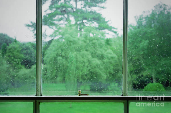 Wall Art - Photograph - Rainy Garden View by Tom Gowanlock