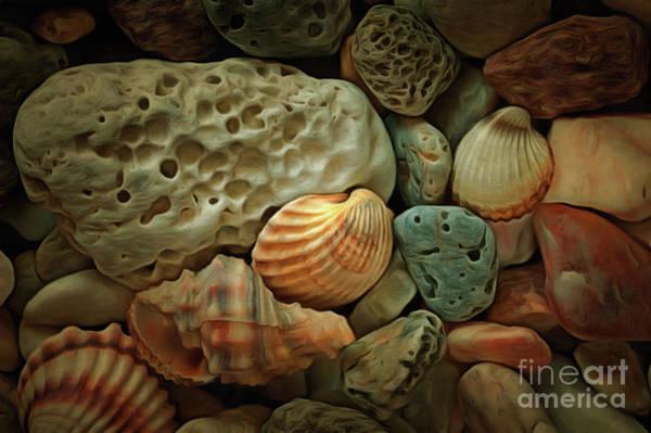 Wall Art - Digital Art - Sea Pebbles With Shells by Michal Boubin