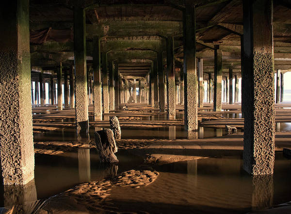 Wall Art - Photograph - Under The Pier by Martin Newman