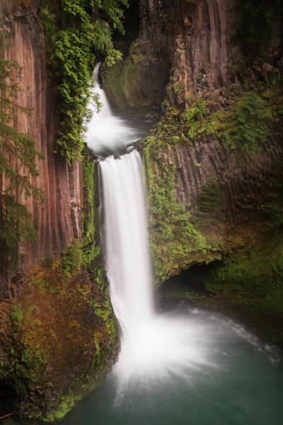 Basalt Columns Photograph - Usa, Oregon, Umpqua National Forest by Jaynes Gallery