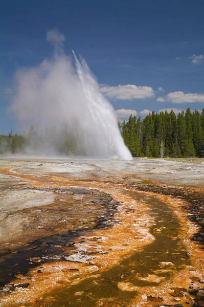 Upper Geyser Basin Photograph - Usa, Wyoming, Yellowstone National by Jeff Hunter