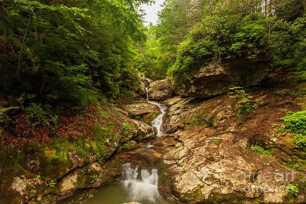 Laurel Hill Creek Photograph - Waterfalls by Vincent Zuniaga