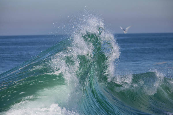 Wall Art - Photograph - Waves In The Pacific Ocean, Newport by Panoramic Images