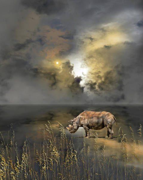 Wall Art - Photograph - 4783 by Peter Holme III