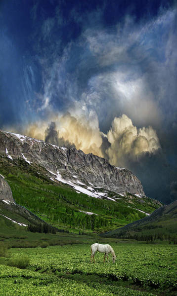 Wall Art - Photograph - 4851 by Peter Holme III