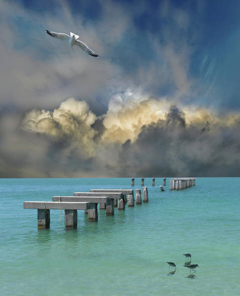 Wall Art - Photograph - 4915 by Peter Holme III