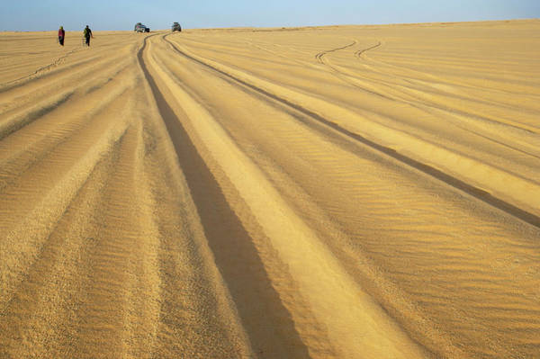 Arid Climate Wall Art - Photograph - 4wd Tracks In Sand Between Agadez And by Johnny Haglund