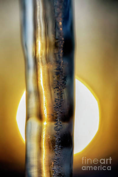 Photograph - Icicle At Sunrise by Thomas R Fletcher