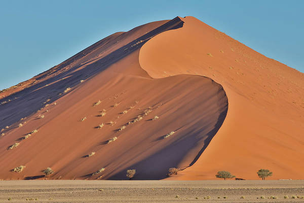 Wall Art - Photograph - Morning Light On The Sand Dunes by Darrell Gulin