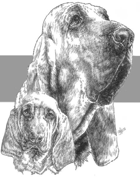 Drawing - Bloodhound And Pup by Barbara Keith