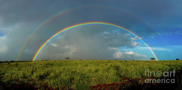 Photograph - Rainbow by Mark Jackson