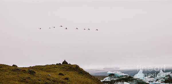 Photograph - Spectacular Landscapes Of Iceland. by Joaquin Corbalan