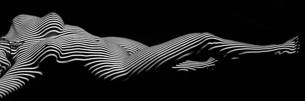 Digital Art - 5298 Zebra Woman H by Chris Maher