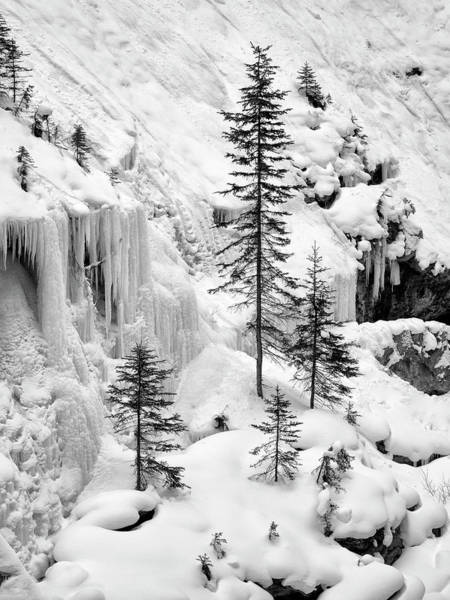 Wall Art - Photograph - Canada, Alberta, Banff National Park by Ann Collins