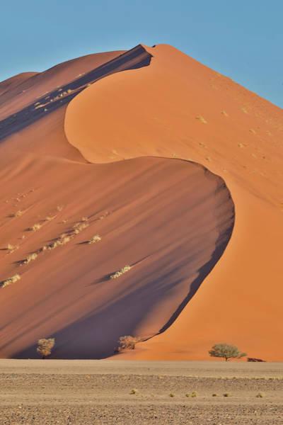 Wall Art - Photograph - Morning Light On The Sand Dunes by Darrell Gulin