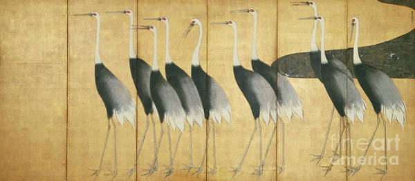 Stork Painting - 6 Panel Screen Depicting Cranes, Edo Period  by Ogata Korin
