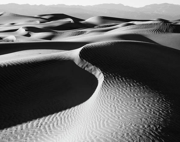 Wall Art - Photograph - Sand Dunes In A Desert, Mesquite Flat by Panoramic Images