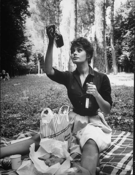 Bottle Photograph - Sophia Loren by Alfred Eisenstaedt