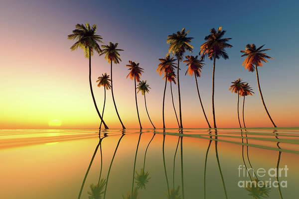 Wall Art - Photograph - Tropical Sunset by Aleksey Tugolukov