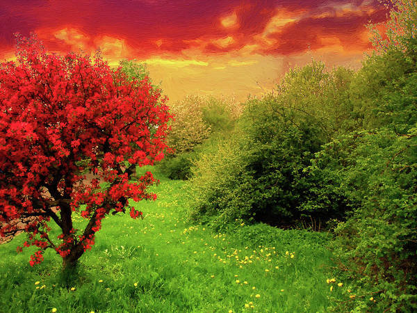 Wall Art - Digital Art - Flowering Tree by Alex Lim