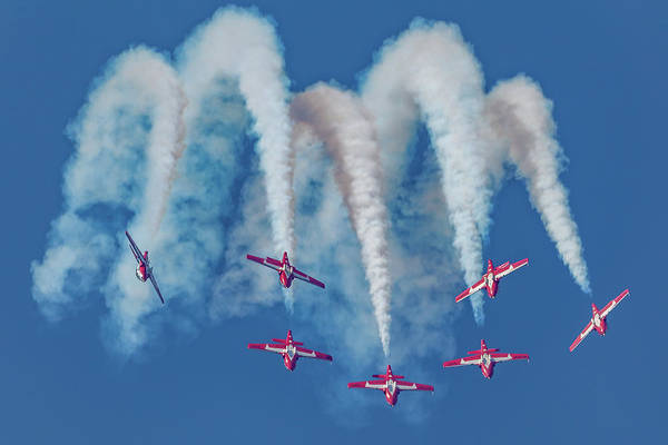 Photograph - 7 Inverted Snowbirds by Donna Corless
