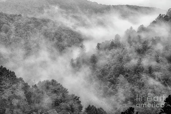Photograph - Mountain Mist by Thomas R Fletcher