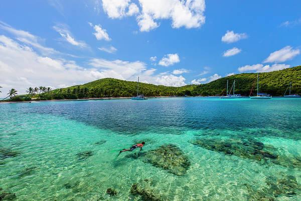 Snorkeling Photograph - Salt Whistle Bay, Mayreau by Flavio Vallenari