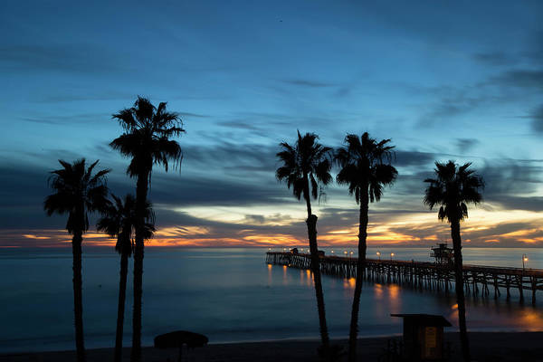 Wall Art - Photograph - Silhouette Of Palm Trees On The Beach by Panoramic Images