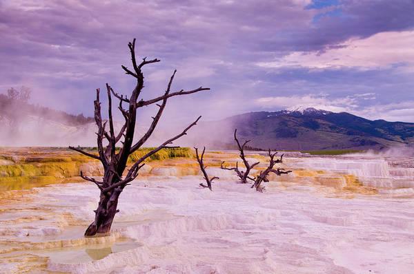 Wall Art - Photograph - Yellowstone National Park by Russell Burden