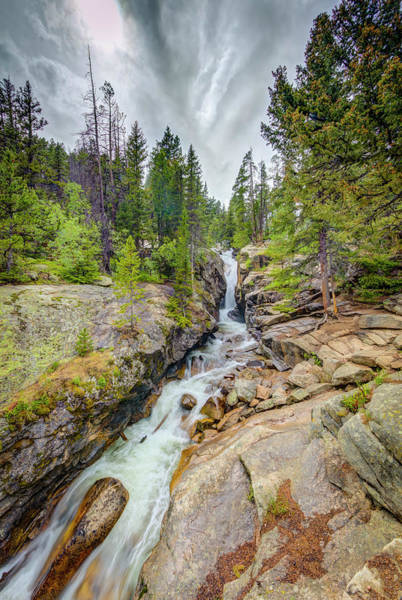 Wall Art - Photograph - Usa, Colorado, Rocky Mountain National by Jaynes Gallery