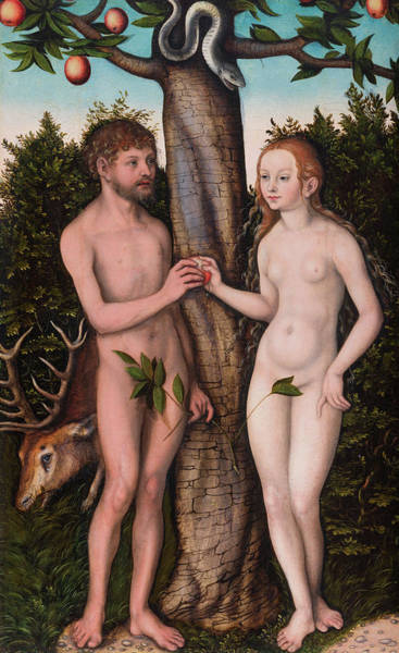 The Creation Of Adam Wall Art - Painting - Adam And Eve by Lucas Cranach the Elder