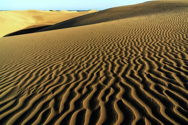 Wall Art - Photograph - Dune Landscape Dunes Of Maspalomas Dunas De Maspalomas Structures In The Sand Nature Reserve Gran by imageBROKER - Harry Laub