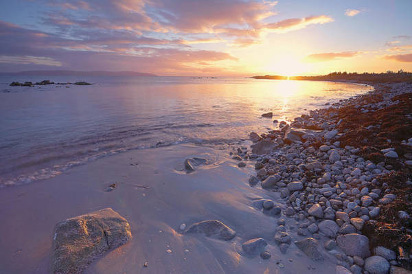 Wall Art - Photograph - Galway Bay by Michael Walsh