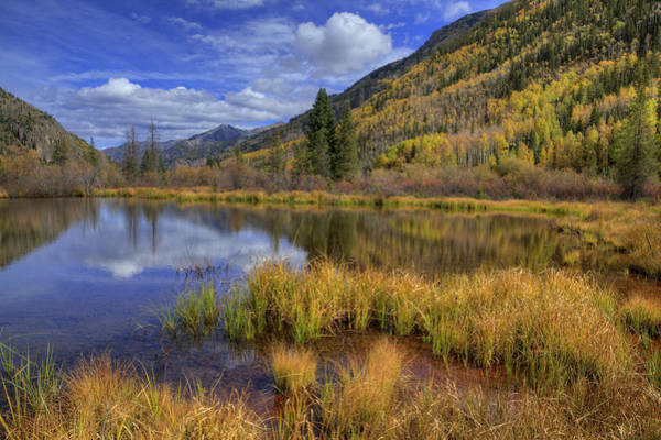 Beaver Pond Wall Art - Photograph - Usa, Colorado, San Juan Mountains by Jaynes Gallery
