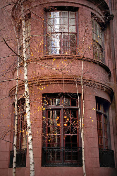 Wall Art - Photograph - Brownstone And Birch  by Jessica Jenney