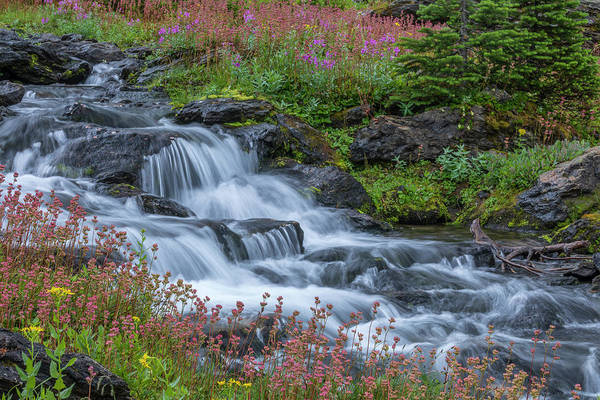 Wall Art - Photograph - Canada, British Columbia, Selkirk by Jaynes Gallery