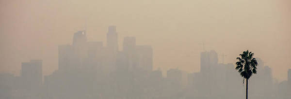 Photograph - Los Angeles Skyline And Suburbs Wrapped In Smoke From Woosle Fir by Alex Grichenko